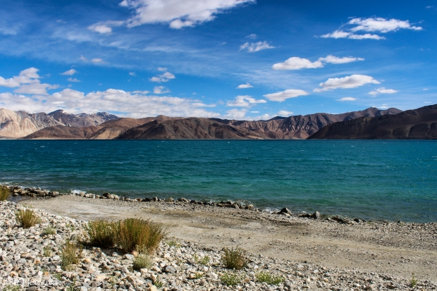 The mystical Pangong Tso